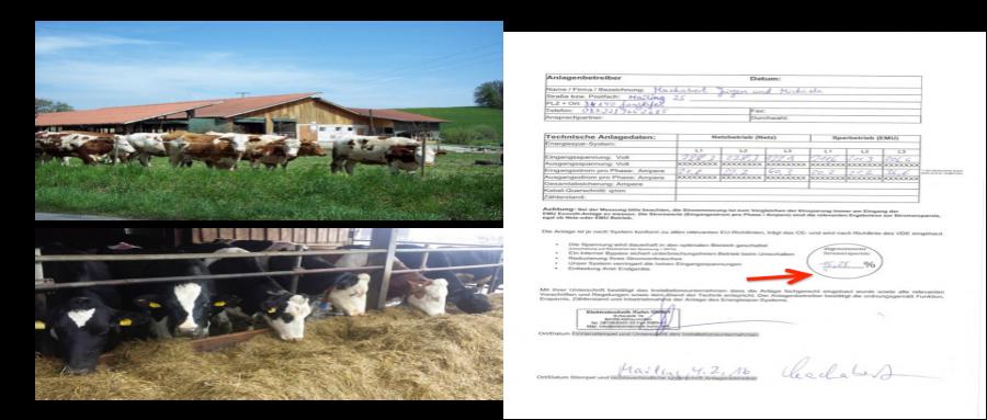 新西兰奶牛场安装智能节电设备
